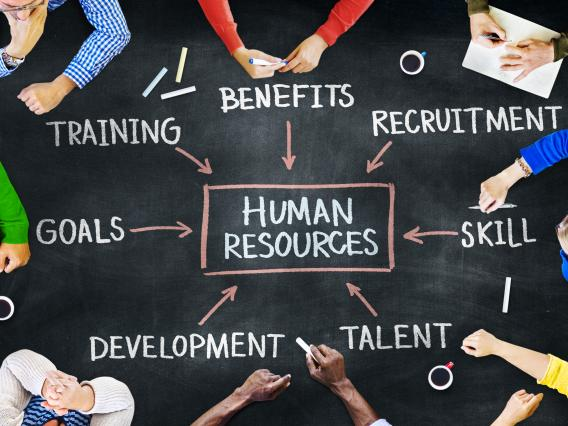 eight sets of hands in a circle with hr and other related services written in chalk